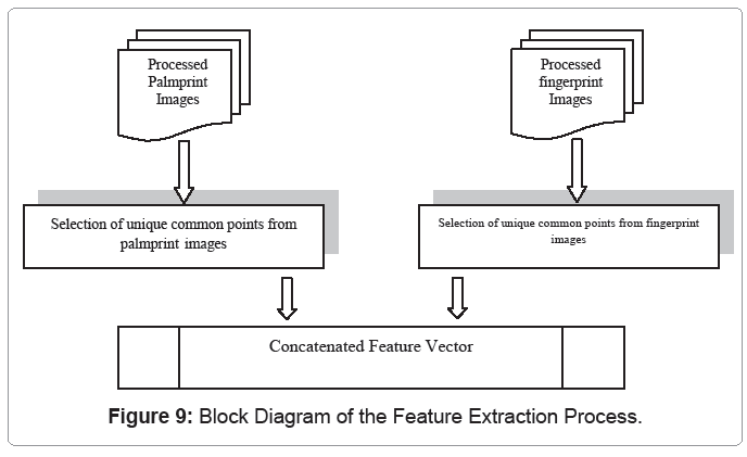 Multi-Modal Biometric Template Security: Fingerprint and Palmprint ...
