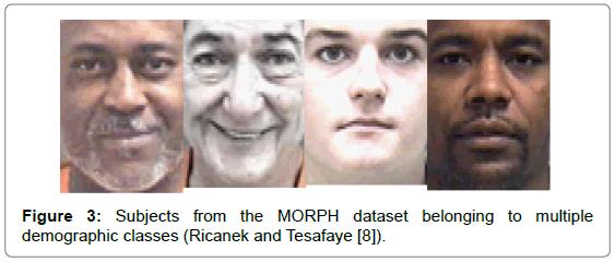 biometrics-biostatistics-subjects-morph-dataset