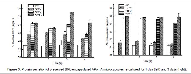 biomimetics-biomaterials-APornA-microcapsules
