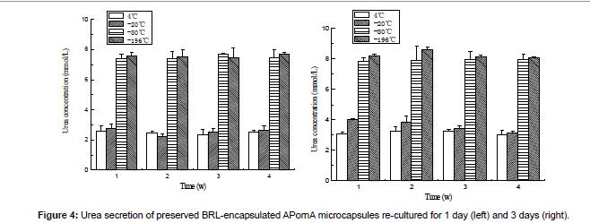 biomimetics-biomaterials-Urea-secretion