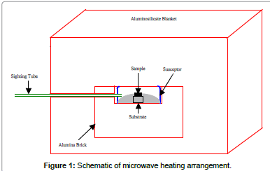 biomimetics-biomaterials-microwave-arrangement