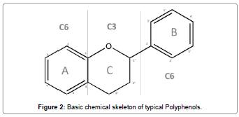 biomolecular-research-therapeutics-chemical-skeleton