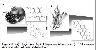 biomolecular-research-therapeutics-ellagic-acid