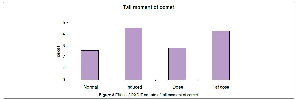 biomolecular-research-therapeutics-moment-comet