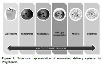 biomolecular-research-therapeutics-nano-sized-delivery