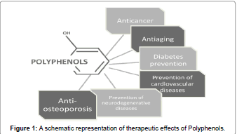 biomolecular-research-therapeutics-therapeutic-effects