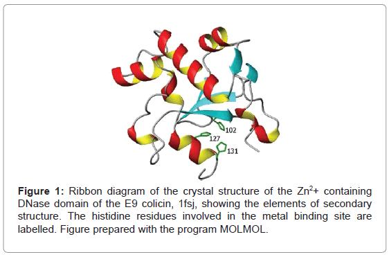 biopolymers-research-Ribbon-diagram