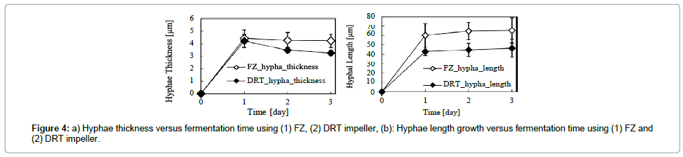 bioprocessing-biotechniques-Hyphae-thickness-versus-fermentation
