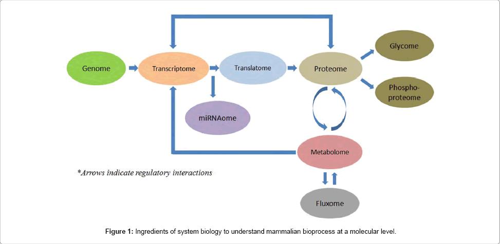 bioprocessing-biotechniques-Ingredients-biology-mammalian