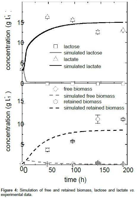 bioprocessing-biotechniques-lactate-experimental