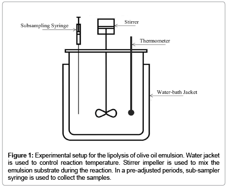 bioprocessing-biotechniques-olive-oil-emulsion