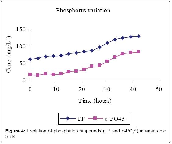 bioremediation-biodegradation-Evolution-phosphate-anaerobic