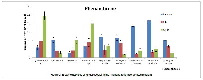 bioremediation-biodegradation-Phenanthrene-incorporated-medium