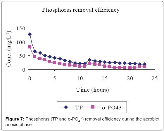 bioremediation-biodegradation-Phosphorus-efficiency-aerobic