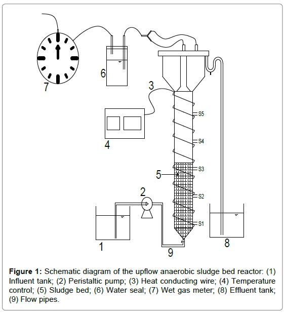bioremediation-biodegradation-Schematic-diagram