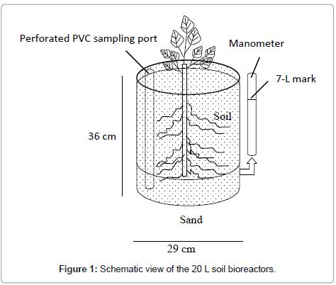 bioremediation-biodegradation-Schematic-view