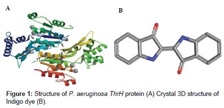 bioremediation-biodegradation-Structure