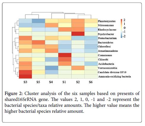 bioremediation-biodegradation-bacterial-species-taxa-relative