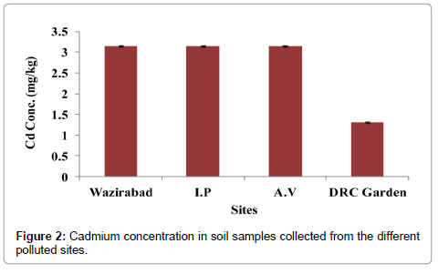 bioremediation-biodegradation-cadmium-concentration-soil