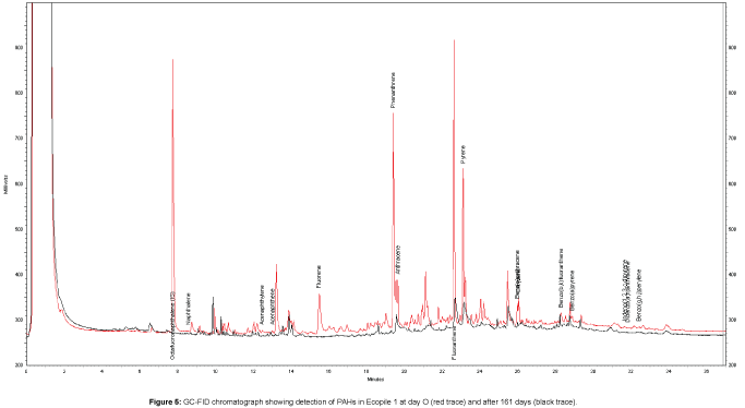 bioremediation-biodegradation-chromatograph-showing-detection