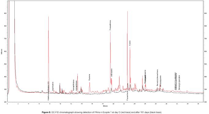 bioremediation-biodegradation-chromatograph-showing-detection