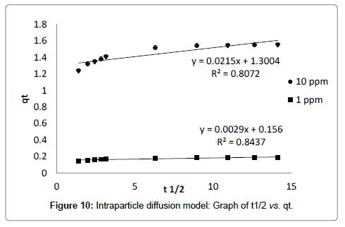 bioremediation-biodegradation-diffusion-model