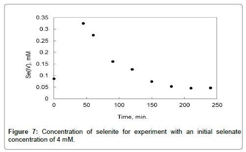 bioremediation-biodegradation-experiment