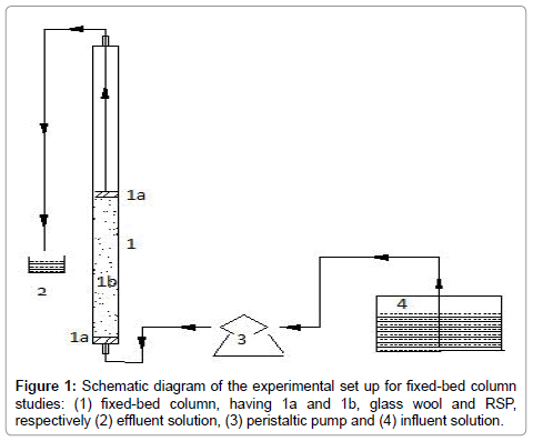 bioremediation-biodegradation-fixed-bed-column