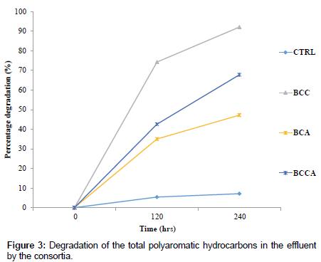 bioremediation-biodegradation-polyaromatic-hydrocarbons