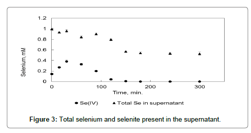 bioremediation-biodegradation-seleniuml