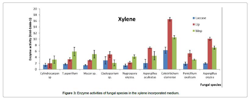 bioremediation-biodegradation-xylene-incorporated-medium