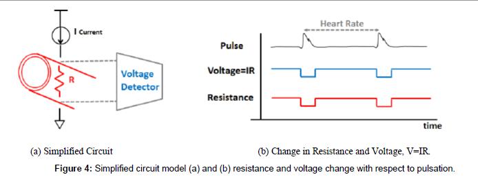 biosensors-bioelectronics-Simplified-circuit