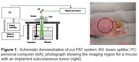 biosensors-bioelectronics-beam-splitter-computer
