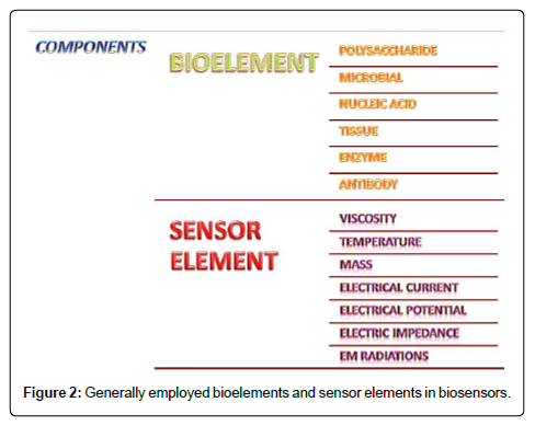 Biosensors: Their Fundamentals, Designs, Types and Most Recent