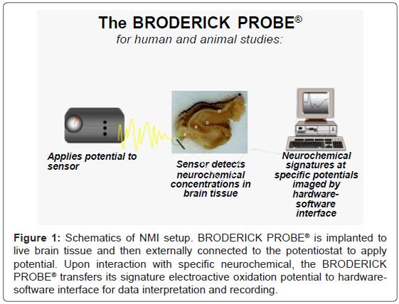 biosensors-bioelectronics-brain-tissue-potentiostat