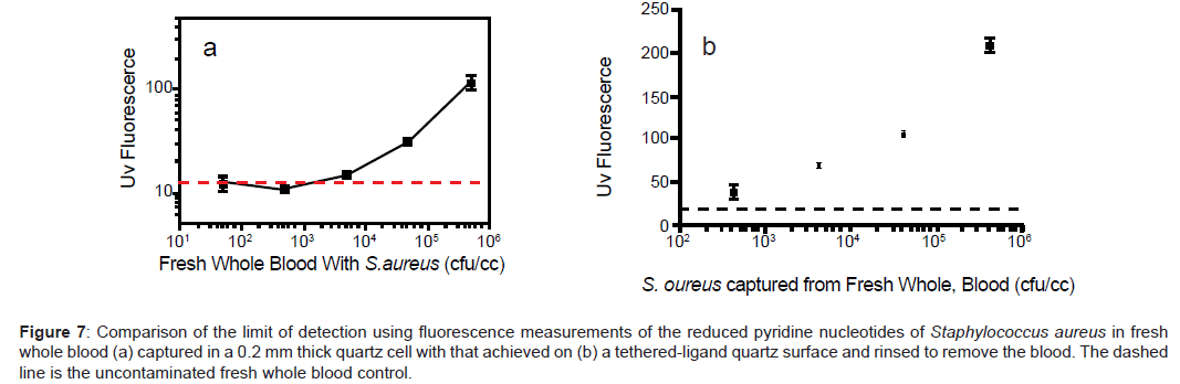 biosensors-bioelectronics-detection-fluorescence-pyridine