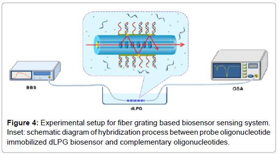 biosensors-bioelectronics-experimental-setup-fiber-grating
