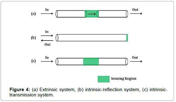 biosensors-bioelectronics-extrinsic-system-intrinsic-reflection