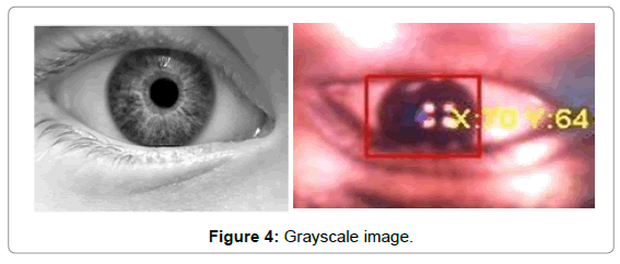 biosensors-bioelectronics-grayscale-image