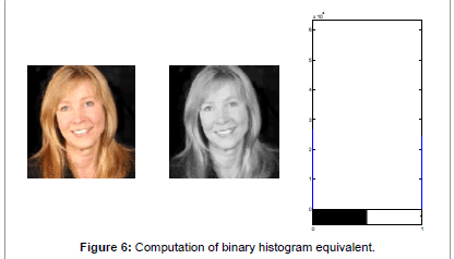 biosensors-bioelectronics-histogram-equivalent