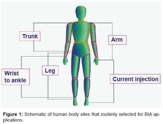 biosensors-bioelectronics-human-routenly-applications