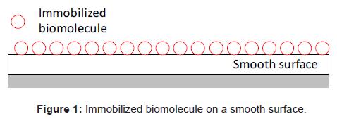 biosensors-bioelectronics-immobilized-biomolecule-smooth