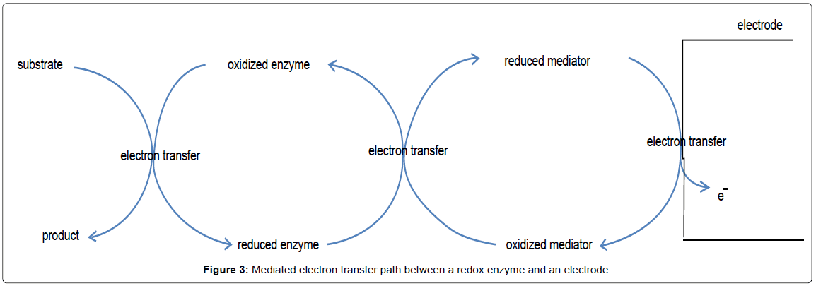 biosensors-bioelectronics-mediated-electron-transfer