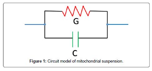 biosensors-bioelectronics-model