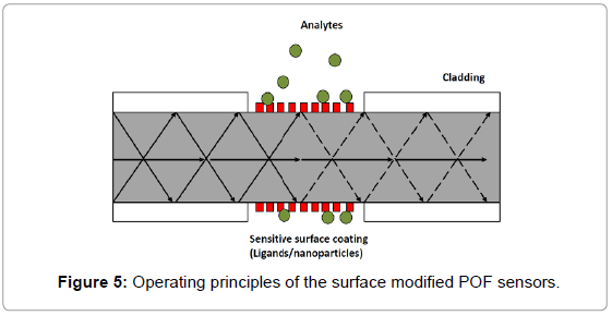 biosensors-bioelectronics-operating-principles-surface