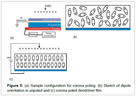 biosensors-bioelectronics-sample-configuration-corona