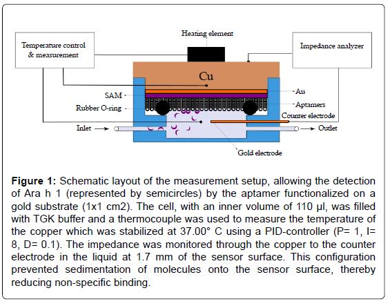biosensors-bioelectronics-schematic-layout-measurement