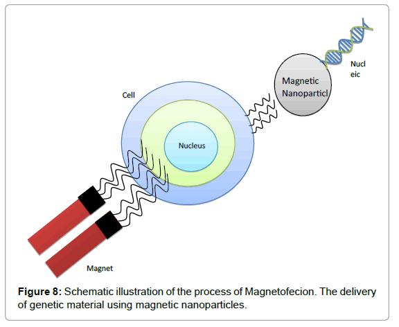 biosensors-bioelectronics-schematic-magnetofecion
