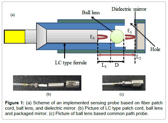 biosensors-bioelectronics-scheme-sensing-probe