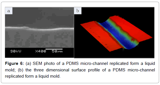 biosensors-bioelectronics-sem-photo-micro-channel